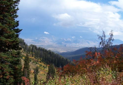 Teton Pass, WY in the fall.
